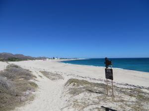 Things to do in the Baja
