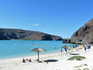 Top Things to do in the Baja